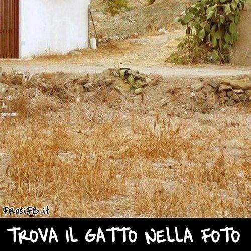 foto simpatiche per fb